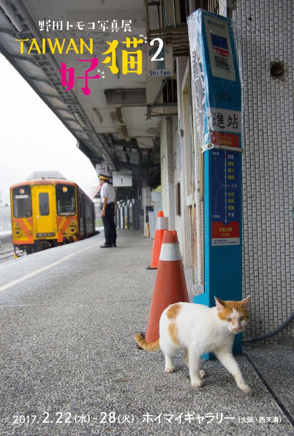 TAIWAN好猫2 DMはがき