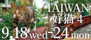 バナー野田トモコ写真展『TAIWAN好猫3 4』 2019.9.18〜24
